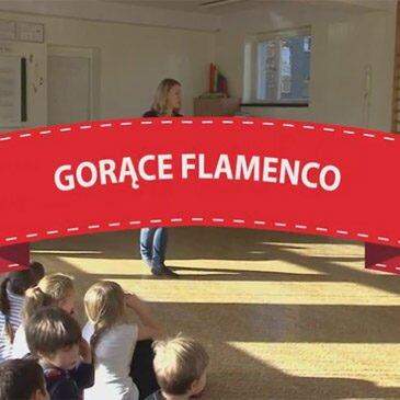 Warsztaty Flamenco – 2015/2016 – video