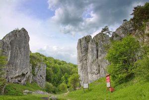 dolina-bolechowicka-195073