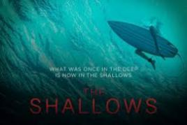 the shallows torrent download